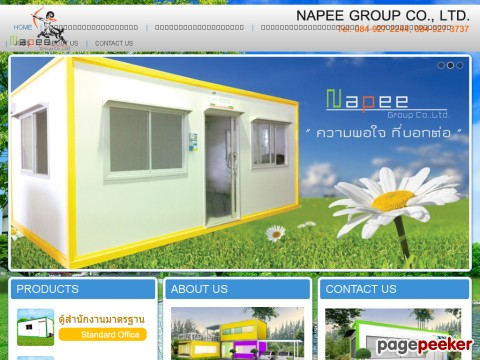 www.napeegroup.com