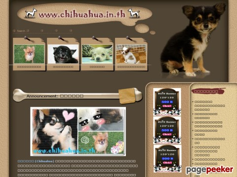 www.chihuahua.in.th